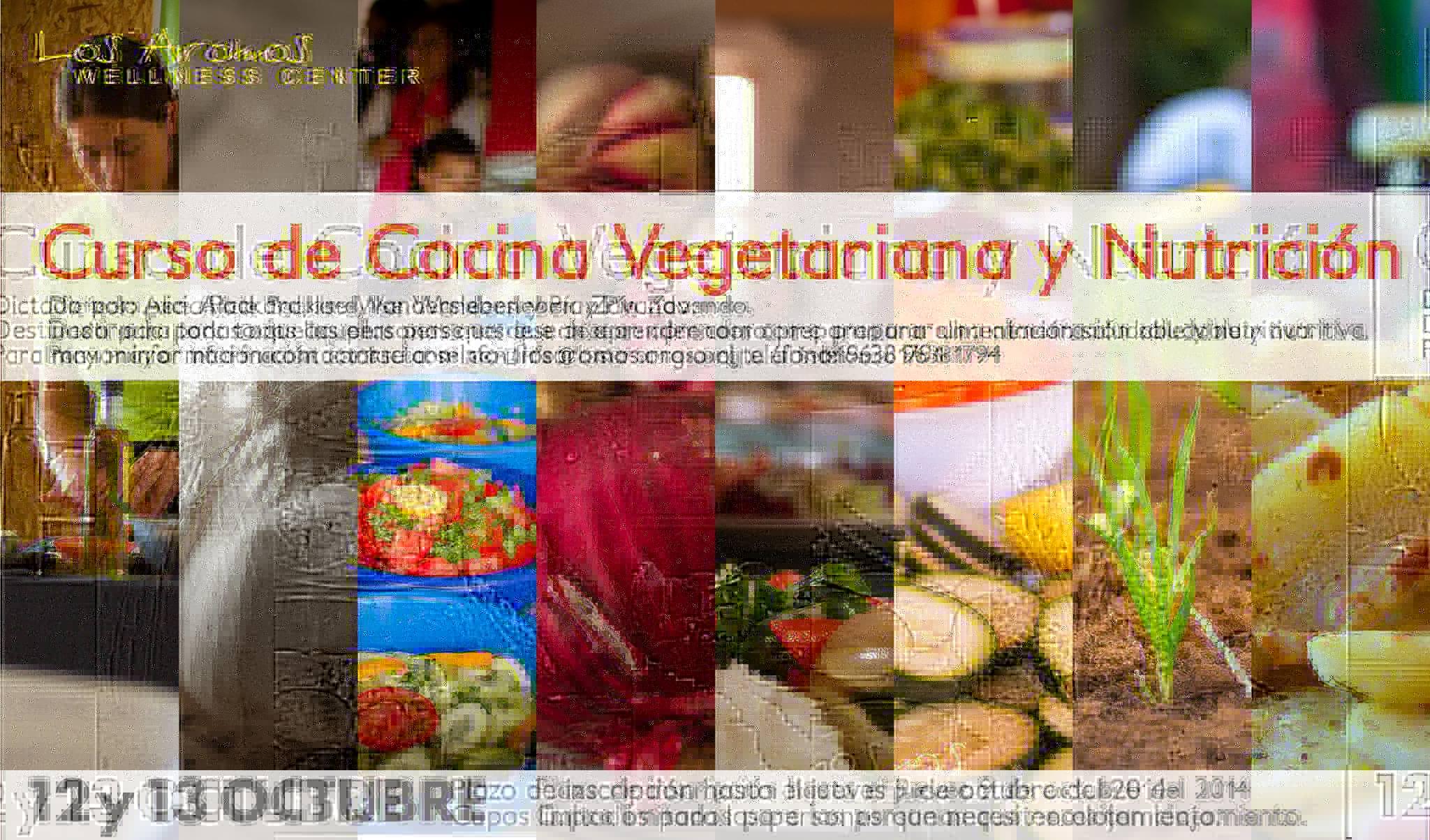 Curso de cocina vegetariana octubre 2014 los aromos - Clases de cocina meetic ...